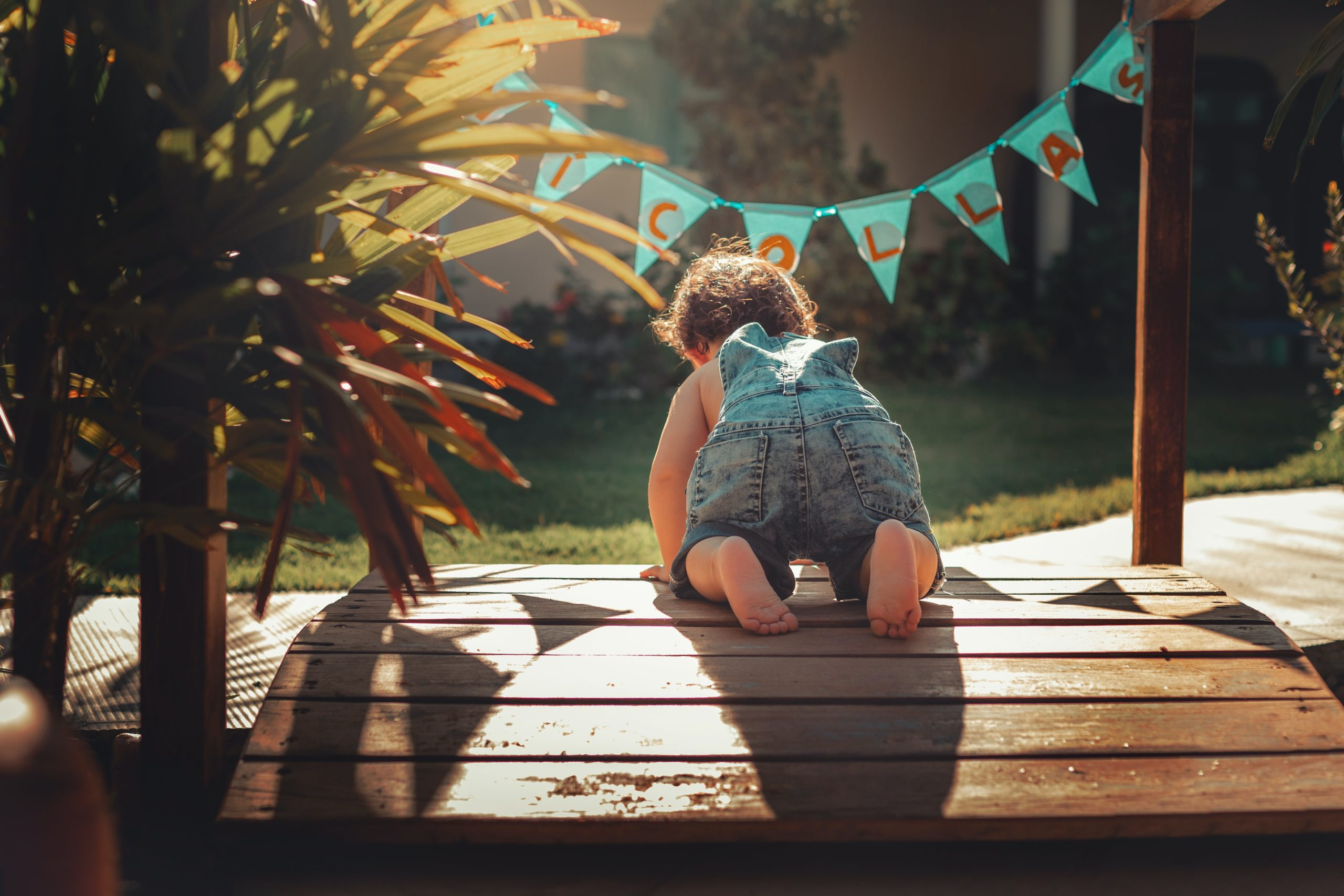 40 popular houseplants that are poisonous to babies